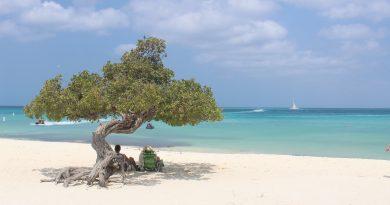 TripAdvisor: Eagle Beach in top 3 mooiste stranden 2017