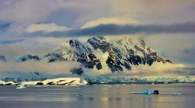 'De Zuidpool wordt steeds groener'