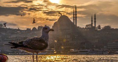 Turkije betaalt $30 per cruisepassagier