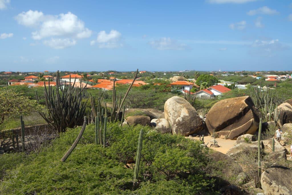 Top 5: wat je niet mag missen op Aruba