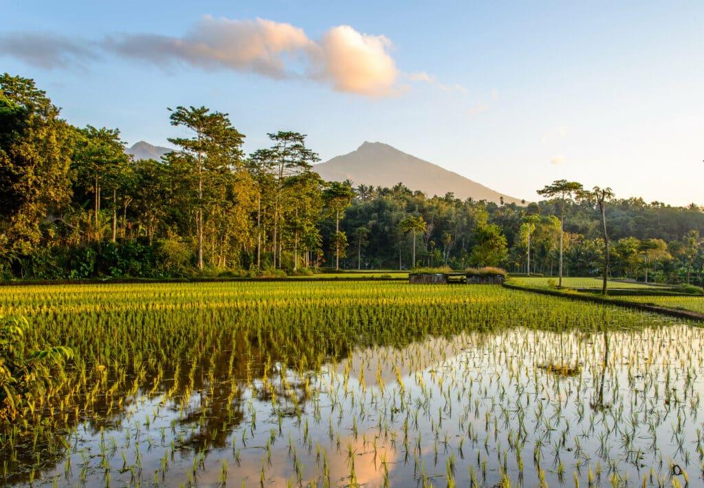 Lombok nieuw in winteraanbod van TUI