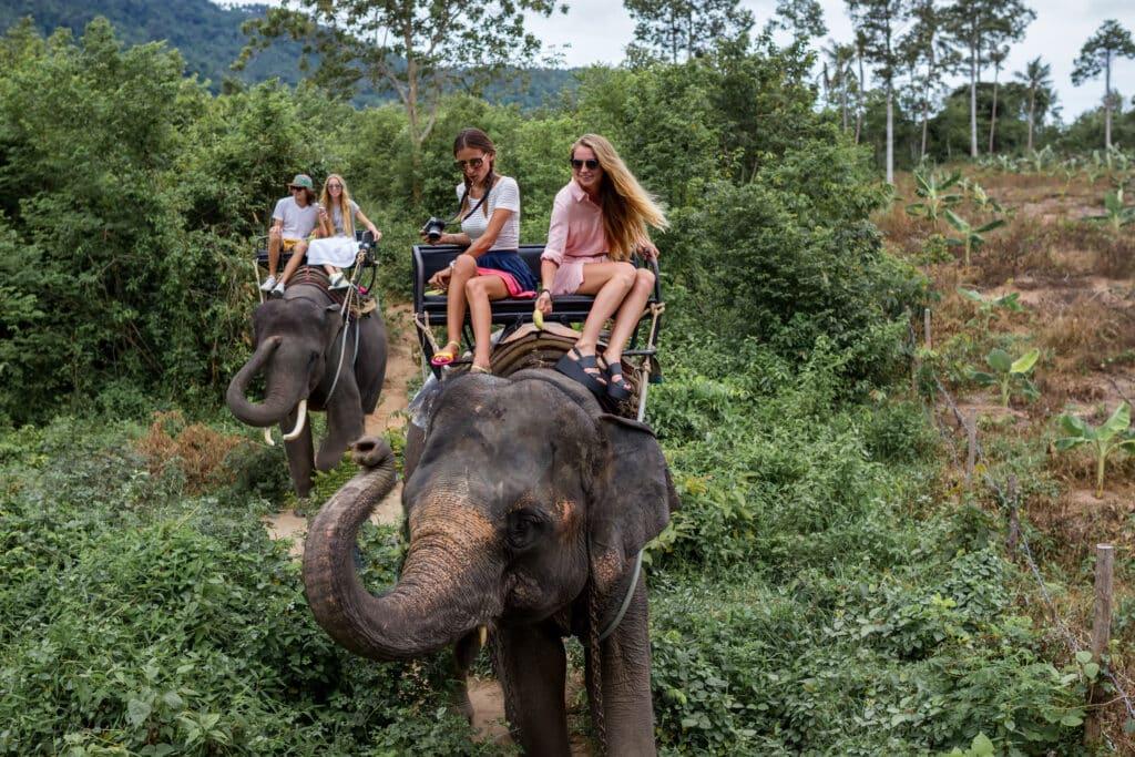 Actie op Schiphol tegen dierenleed op vakantie