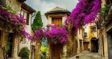 Populaire Franse regio's voor echte levensgenieters