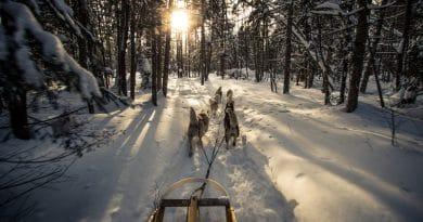 Canada in hartje winter: iets voor jou?