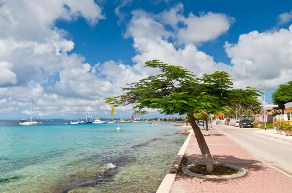 Beat Blue Monday met een vakantie op Bonaire