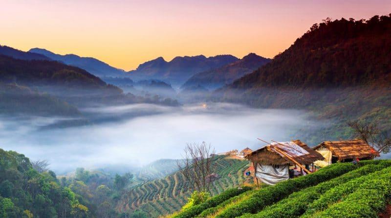 Bangkok vs. Chiang Mai: welke Thaise stad past bij jou?