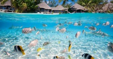Tahiti: paradijsje in de Pacifische Oceaan