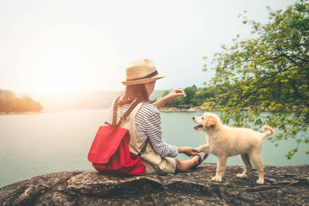 Female tourists and beloved dogs in beautiful nature in a tranqu