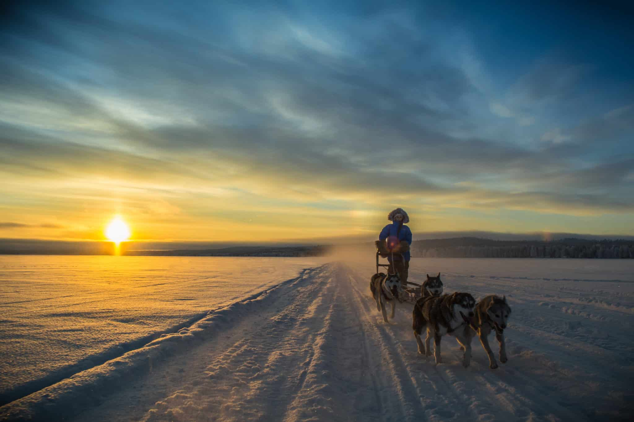 Top 5 must do voor een winterbeleving in Fins Lapland