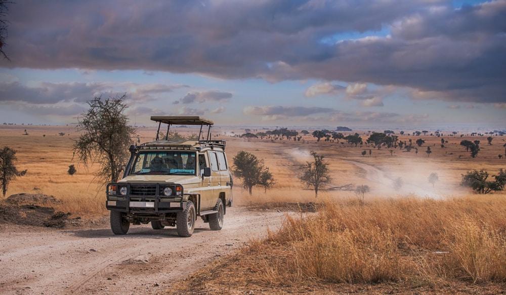 De Serengeti overtreft al je verwachtingen