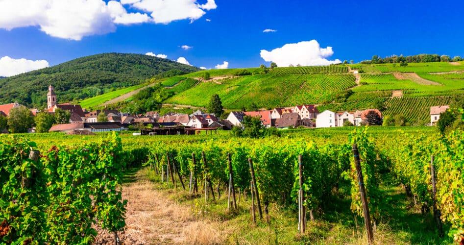 Geef jouw zomer een mooie afsluiting in de Elzas
