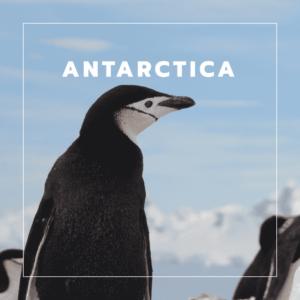 Antartica vakantiebestemming