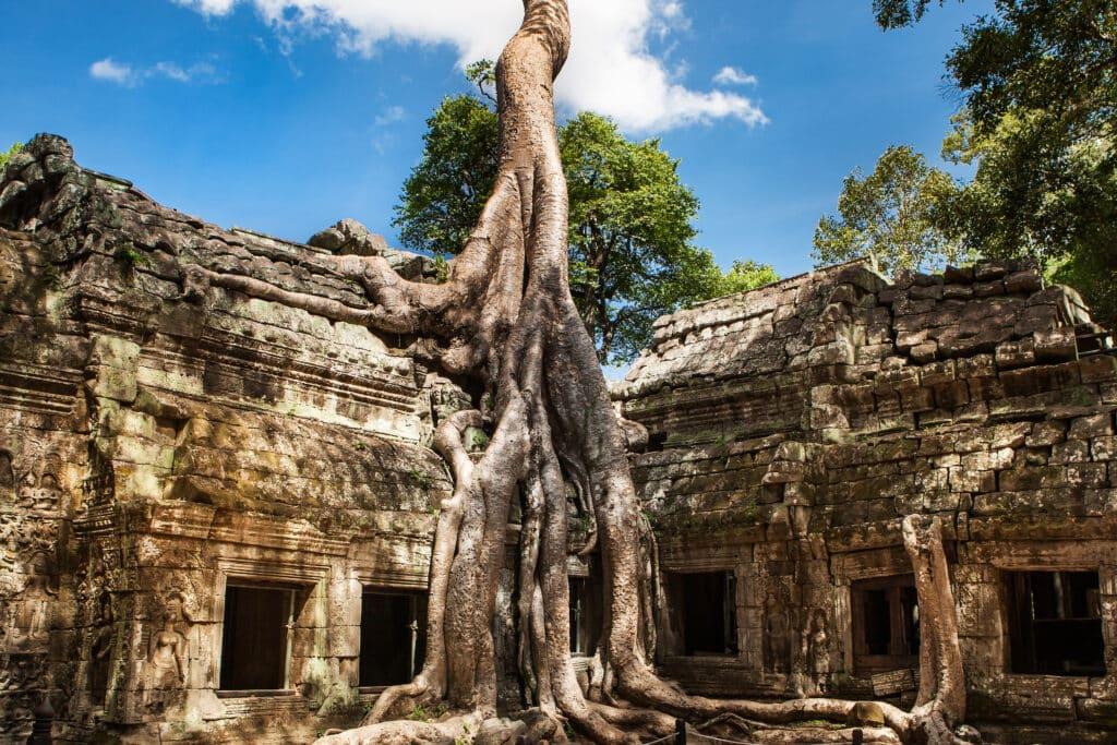 Ta Phrom, Cambodja