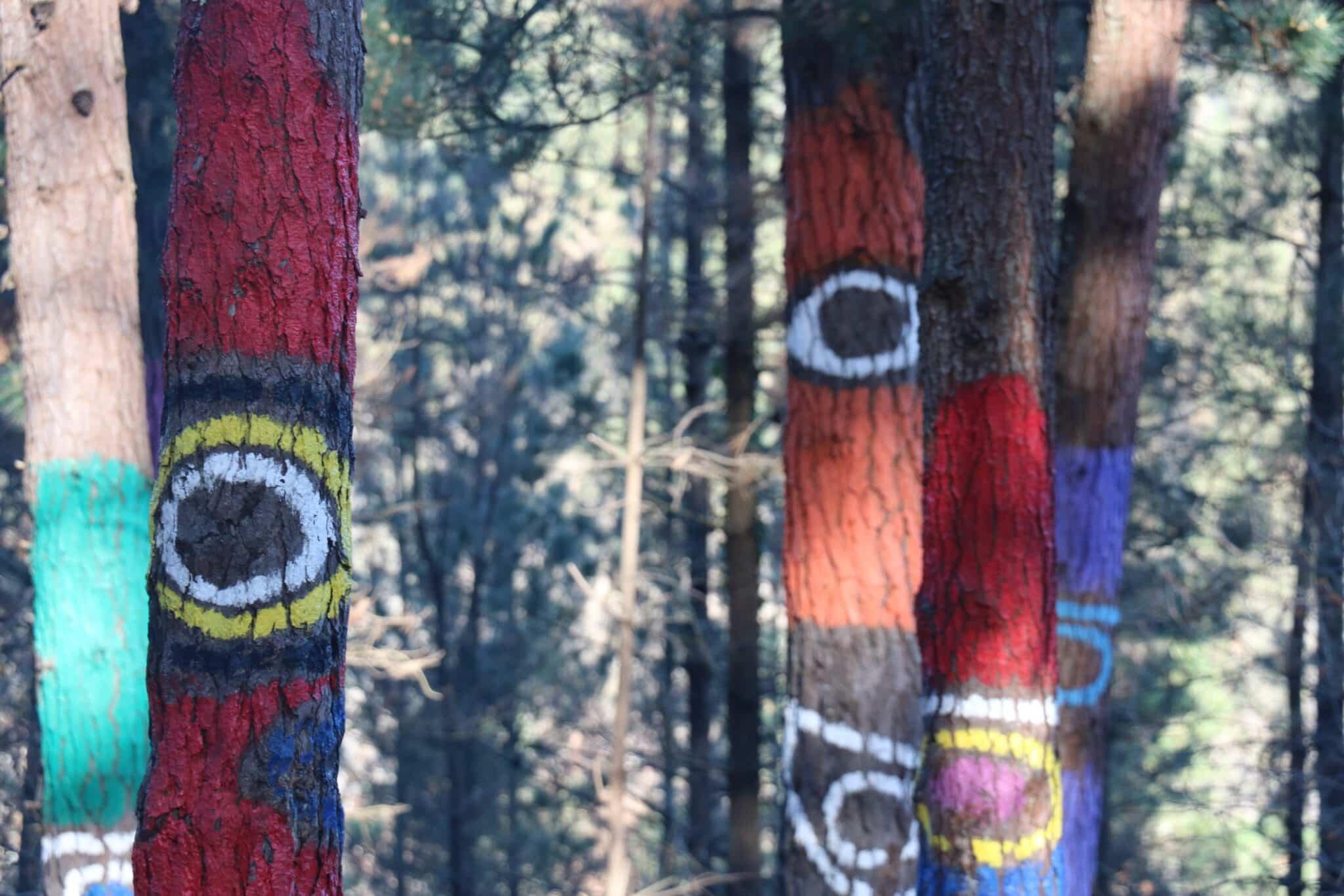 Bosque de Oma, het beschilder bos