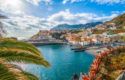 Het bloemendeiland Madeira