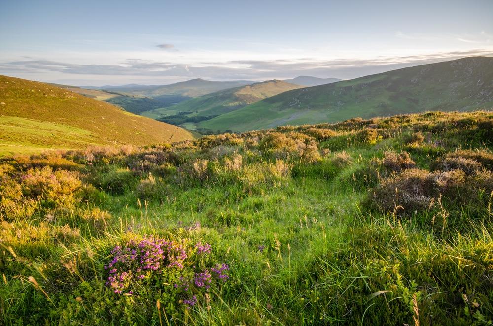 Bezoek het prachtige National Park van Ierland