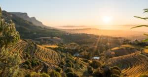 Bezoek een van de wijnstreken in Zuid Afrika