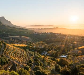 Wijnstreken in Zuid Afrika