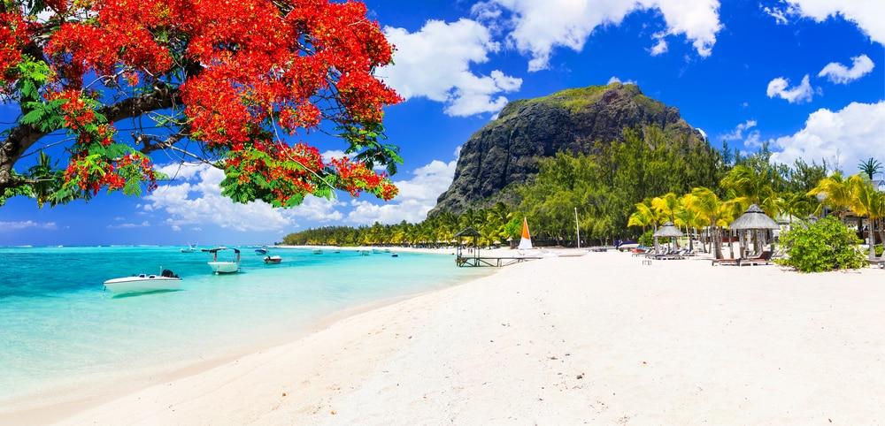 De hagelwitte stranden van Mauritius