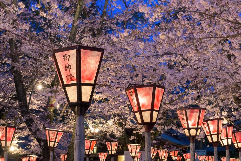 Een festival om de bloei van kersenbloesem te vieren