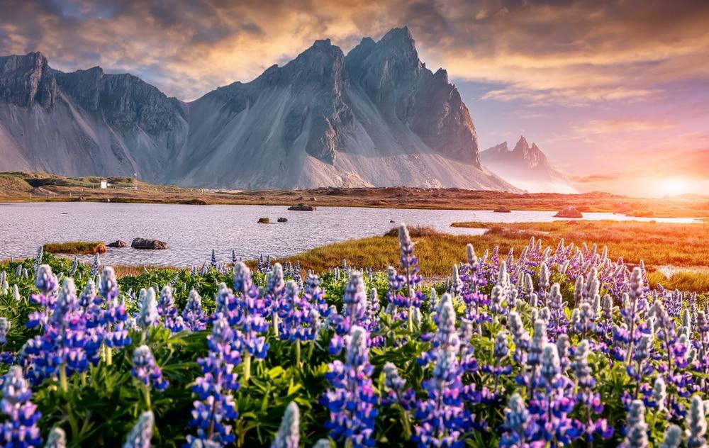 Op social distance vakantie naar het prachtige IJsland