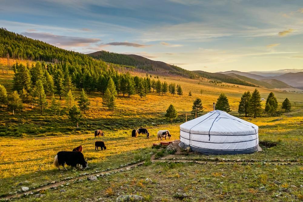 Maak een rondreis door het social distance land Mongolië