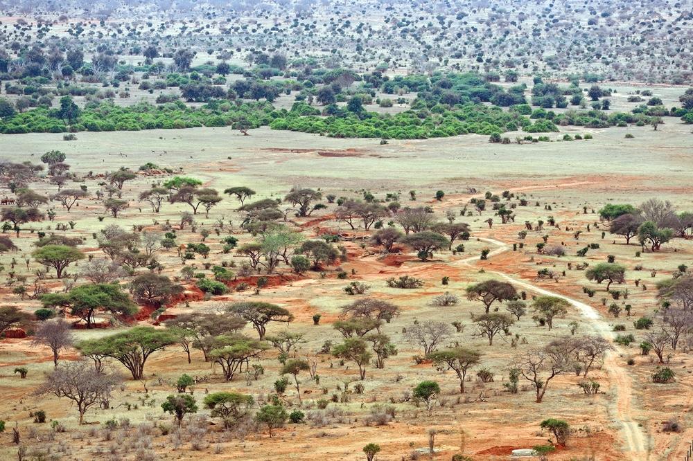 Het prachtige Tsavo National Park in Kenia