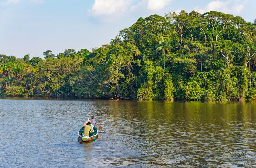 Trek door de jungle van Yasuni Nationaal Park